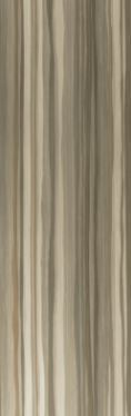 Gloss Brown Decor Stripe Style 1009-11